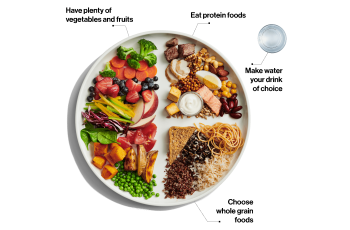 Canada's Food Guide - balanced plate
