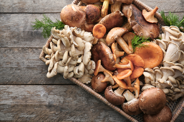 tray with variety of raw mushrooms - vitamin d sources